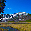 Yellowstone National Park by Kenneth Cole