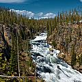 Yellowstone National Park Lewis River by Joey Lax-Salinas