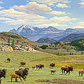 Yellowstone Spring by Paul Krapf