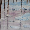Yellowstone's Geese by Diana Prout