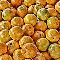 Yep Oranges by John Saunders