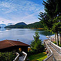 Yes Bay Lodge - The View by Jim Lucas