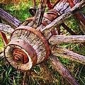 Yesterday's Wheel by Marty Koch