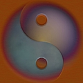 Yin And Yang  by Liane Wright