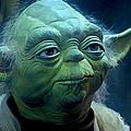 Yoda by Paul Tagliamonte
