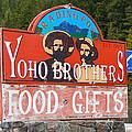 Yoho Brothers by Guy Whiteley