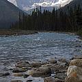 Yoho National Park British Columbia by Sharon Elliott
