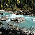 Yoho River by Bob and Nancy Kendrick