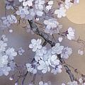 Yoi Crop by Haruyo Morita