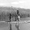Yokuts Poling Tule Boats by Underwood Archives Onia