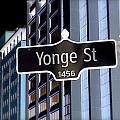 Yonge Street by Valentino Visentini