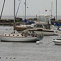 York Harbor Maine by Denyse Duhaime