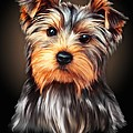Yorkie Portrait By Spano by Michael Spano