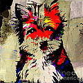 Yorkshire Terrier  by Marvin Blaine