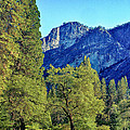 Yosemite Ahwahnee Hotel Courtyard by Bob and Nadine Johnston