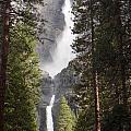 Yosemite Falls 2013 by Audrey Van Tassell