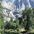 Yosemite Falls by Mini Arora
