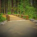 Yosemite Falls Trail by LeeAnn McLaneGoetz McLaneGoetzStudioLLCcom