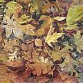 Yosemite Leaves by Margaret Anderson