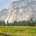 Yosemite Meadow by Christine Owens