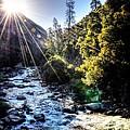 Yosemite by Phillip Garcia