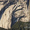 Yosemite Rock Detail by Bob Phillips
