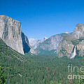 Yosemite Valley by David Davis
