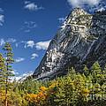 Yosemite Valley Rocks by Dianne Phelps