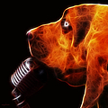 You Ain't Nothing But A Hound Dog - Dark - Electric by Wingsdomain Art and Photography