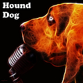 You Ain't Nothing But A Hound Dog - Dark - Electric - With Text by Wingsdomain Art and Photography