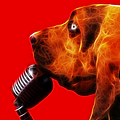You Ain't Nothing But A Hound Dog - Red - Electric by Wingsdomain Art and Photography