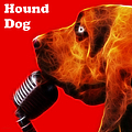 You Ain't Nothing But A Hound Dog - Red - Electric - With Text by Wingsdomain Art and Photography