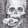 You Are What You Eat Skull Drawing by Adam Long