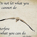 You Can Do It  by Kerri Farley