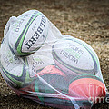 You Gotta Have Balls To Play Rugby by George DeLisle