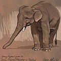 Young Asian Elephant sketch by Aaron Blaise