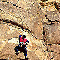 Young Climber In Joshua Tree Np-ca- by Ruth Hager