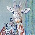 Young Giraffes by Lizi Beard-Ward