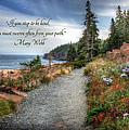 Your Path by Lori Deiter