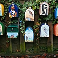 You've Got Mail by Chris Dutton