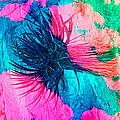 Yucca Abstract Pink Blue Green by Alan Socolik