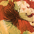 Yucca Abstract Warm by Alan Socolik