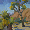 Yucca And Joshua by Diane McClary