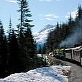Yukon Railroad by Tracy Winter