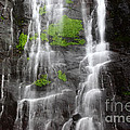 Yungas Waterfall Detail by James Brunker