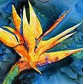 Yupo Paradise by Patricia Beebe