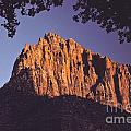 Zion National Park by Howard Stapleton