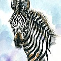 Zebra 1 by Mary Armstrong