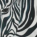 Zebra by Aliya Michelle