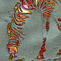 Zebra Art - 64spc by Variance Collections